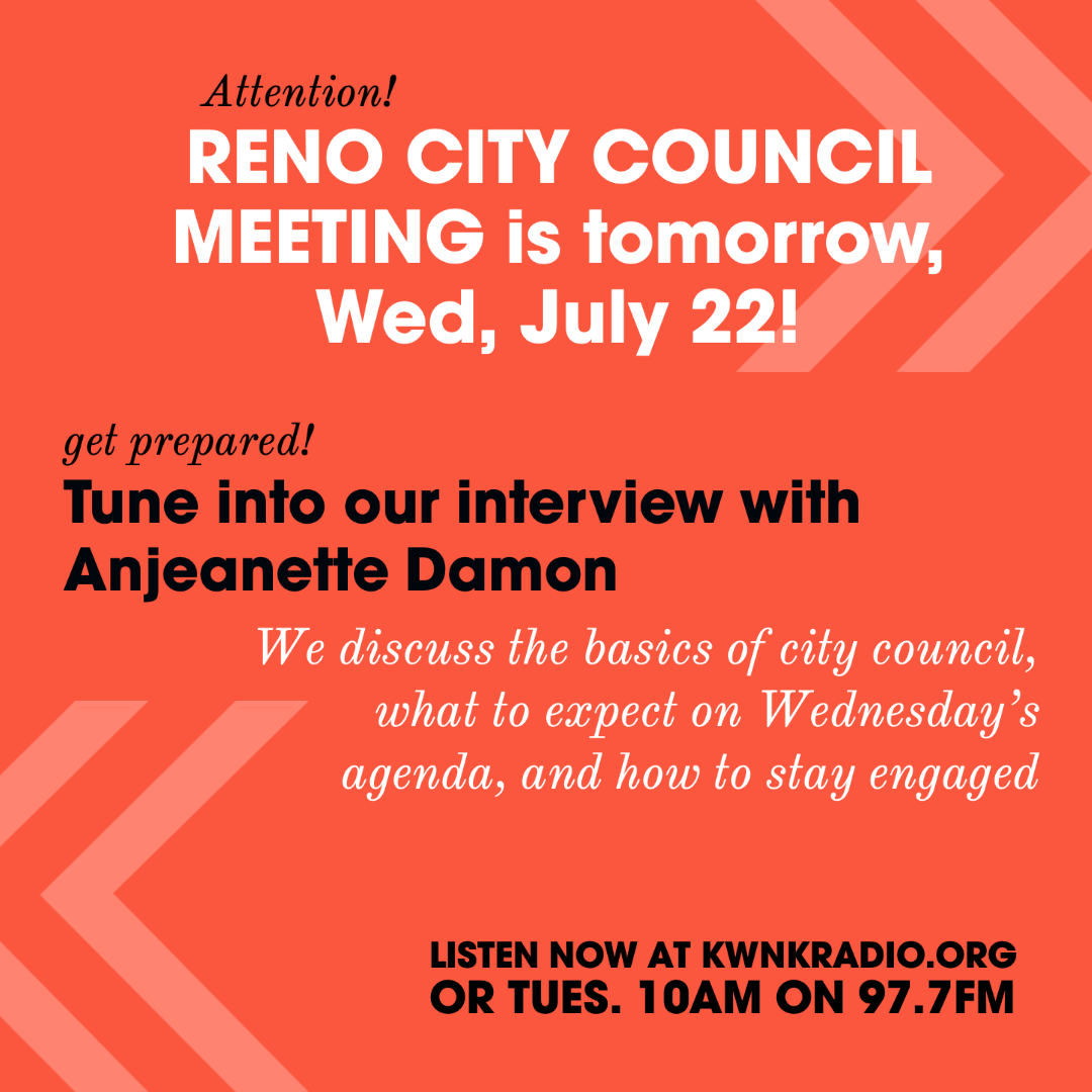 A Conversation on Reno City Council with Anjeanette Damon